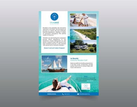 Bluezest Package Flyer